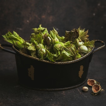 Świeże zielone orzechy laskowe w doniczce na ciemny brąz. widok z boku.