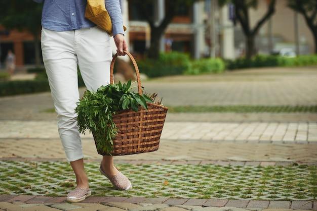 Świeże zielone sałatki