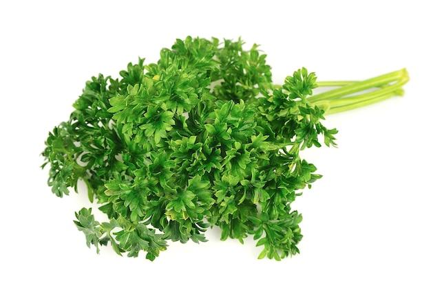 Świeże zioło pietruszki na białym tle