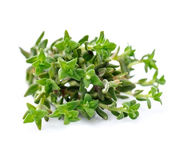 Świeże zioło tymianku na białym tle