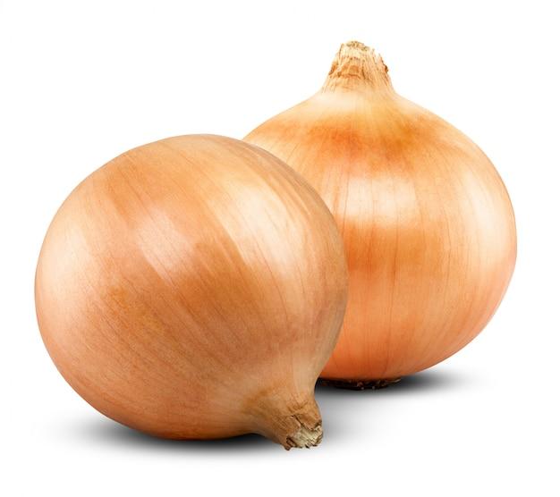 Świeże złote cebule na białym tle