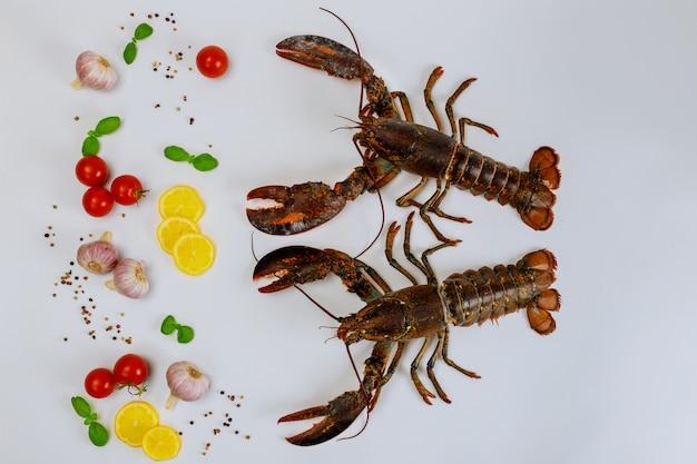Świezi homary odizolowywający na biel powierzchni z pikantność