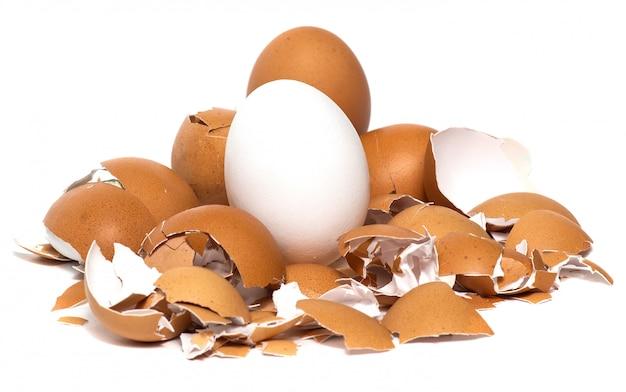 Świezi kurczaków jajka odizolowywający na bielu
