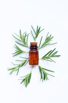Świezi rozmaryn liście z szklaną butelką na biel powierzchni. koncepcja olejków eterycznych.