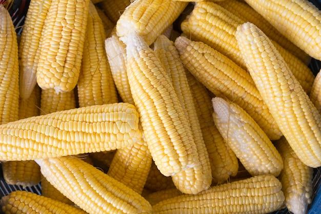 Świezi słodkiej kukurydzy cobs przy rolnika rynkiem