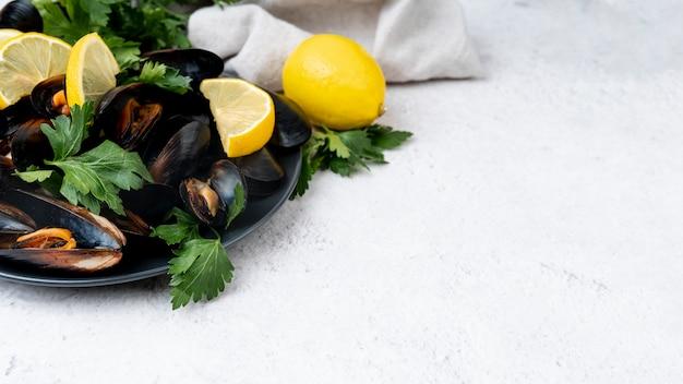 Świezi śródziemnomorscy mussels z kopii przestrzenią
