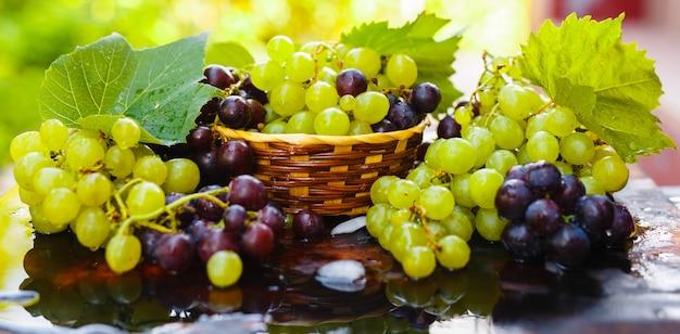 Świezi winogrona w słomianym koszu z wodą bryzgają na nieociosanym drewnianym stole.