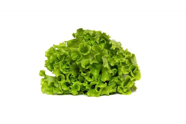 Świezi zieleni sałaty sałatki liście odizolowywający na bielu