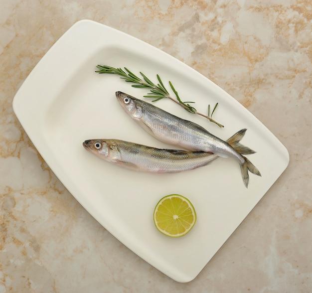 Świeżo pachnące ryby europejskie