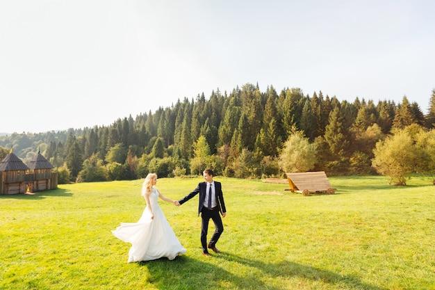 Świeżo poślubiona para spaceru na trawniku w górach