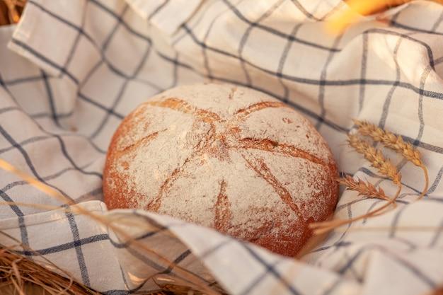 Świeżo upieczony bochenek chleba na polu pszenicy lub żyta. kobieta położyła bochenek żytniego, świeżego chleba na tle pszennych kłosów. chleb żytni pełnoziarnisty na serwetce w kratkę w polu kłosów pszennych