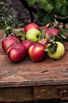 Świeżo zebrane rustykalne jabłka upraw