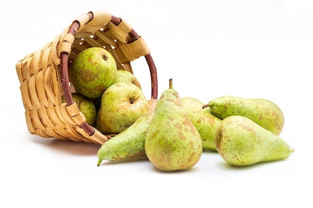 Świeżo zebrane surowe zielone gruszki z drzewa w wiklinowym koszu.