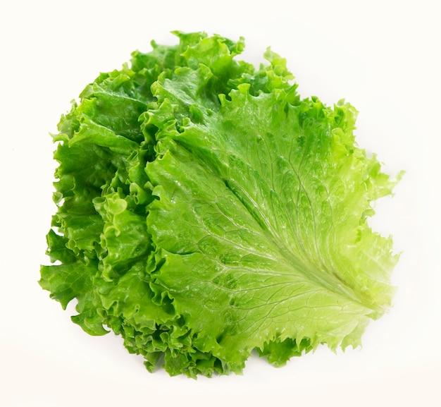 Świeżość zielonej sałaty liściowej na białej powierzchni