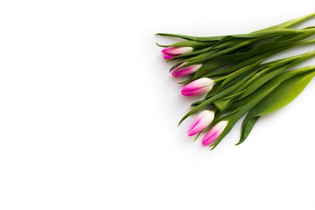 Świeży bukiet pięciu tulipanów