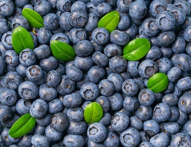 Świeży czarnej jagody i zieleni liści tło. tekstury jagod jagodowy zakończenie.