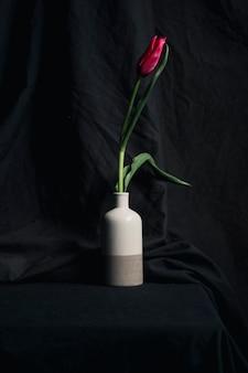 Świeży czerwony kwiat w wazie
