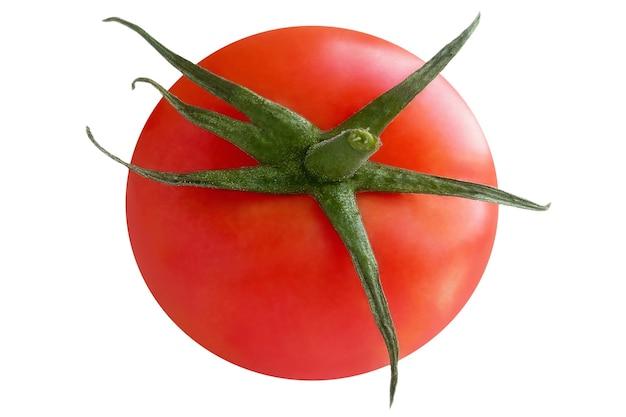 Świeży czerwony pomidor z zieloną łodygą na białej powierzchni.