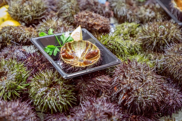 Świeży kawior z jeżowca w półskorupach na targu rybnym (selektywne skupienie)