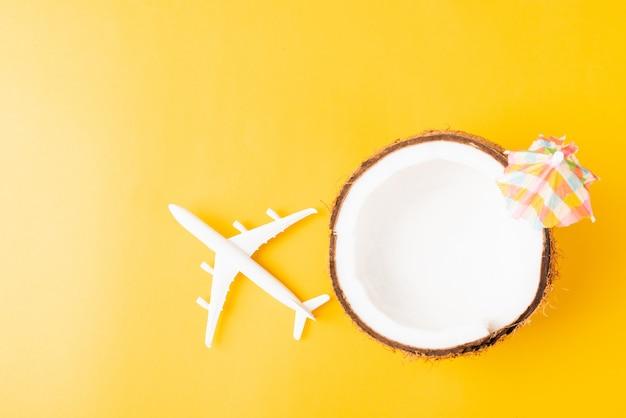 Świeży kokos, rozgwiazda, samolot, samolot i parasol słoneczny