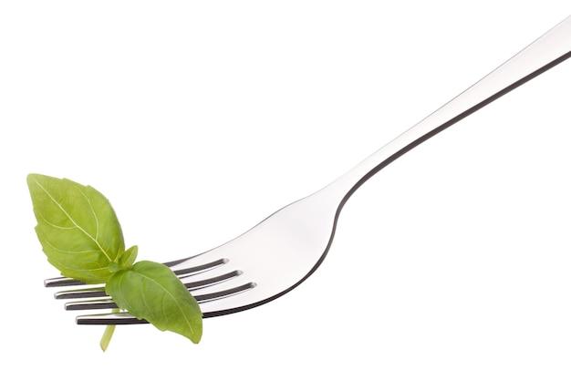 Świeży liść bazylii na widelec na białym tle na białym tle wyłącznik. koncepcja zdrowego odżywiania.