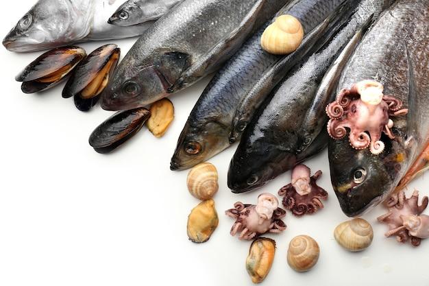 Świeży połów ryb i innych owoców morza