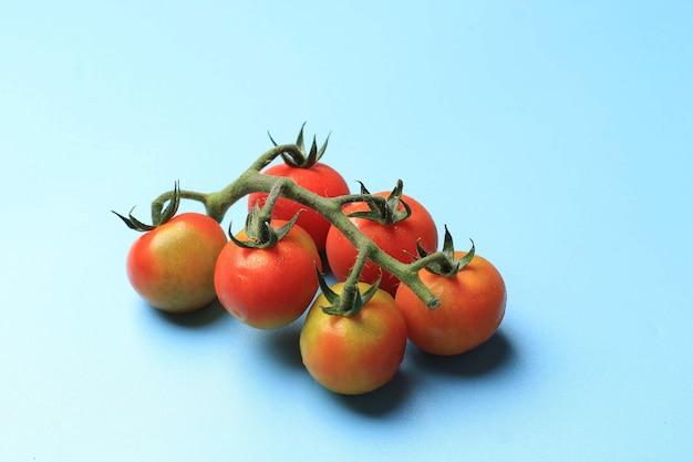 Świeży pomidor czereśniowy z łodygą na białym tle na niebieskim tle