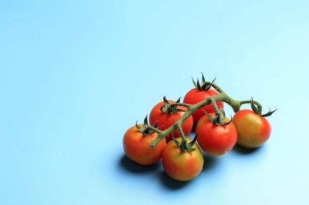 Świeży pomidor koktajlowy z łodygą na białym tle na niebieskim tle, miejsce po lewej stronie