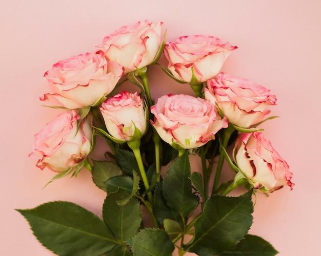 Świeży różowy bukiet róż