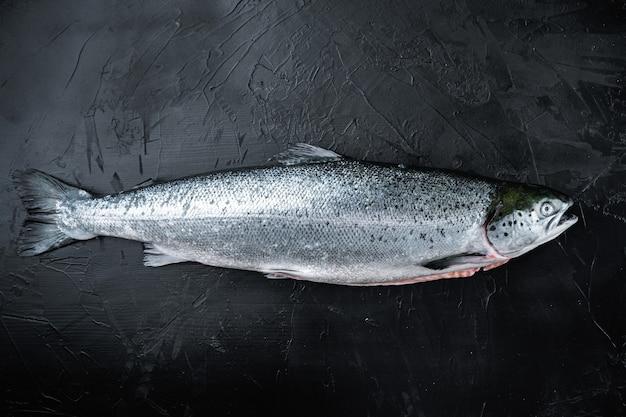 Świeży, surowy filet z czerwonej ryby z łososia z dodatkami