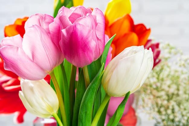 Świeży wiosna tulipan pączkuje przeciw białemu ściana z cegieł zakończeniu up