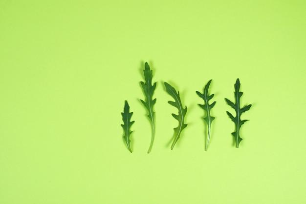 Świeży zielony arugula opuszcza na zielonym tle