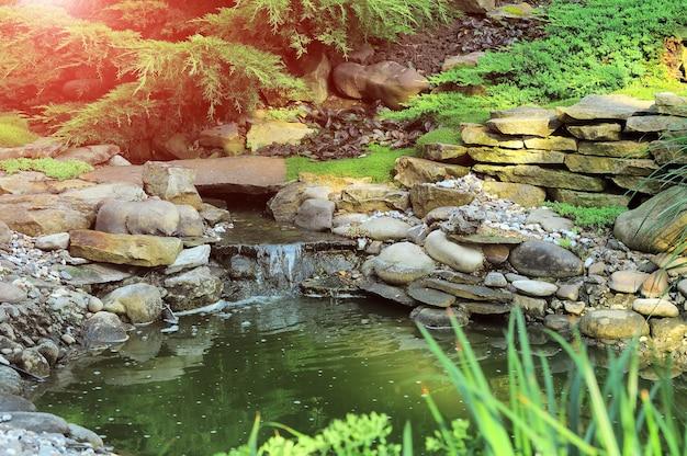 Świeży zielony trawnik w słońcu, krajobraz w ogrodzie