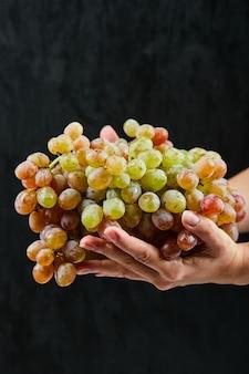 Świeżych czerwonych winogron w ręku na czarnym tle. wysokiej jakości zdjęcie
