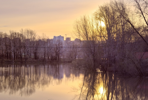 Świt nad rzeką ob w nowosybirsku wysoka woda na rzece nagie drzewa w wodzie