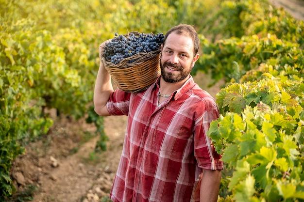Sycylijski rolnik w winnicy w prowincji trapani