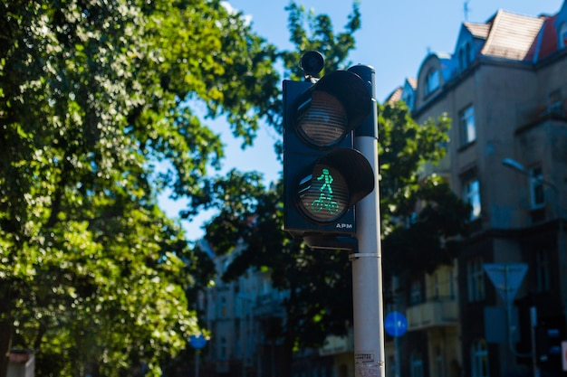 Sygnalizacja świetlna na przejściu dla pieszych