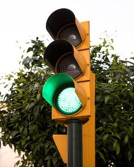 Sygnalizacja świetlna z zielonym kolorem przed zielonym drzewem