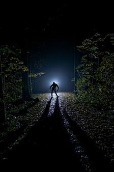 Sylweta mężczyzny w lesie w nocy