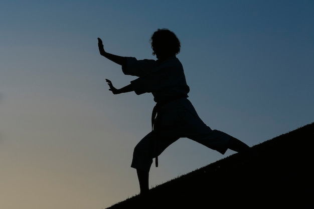 Sylwetka kobiety karate w pozycji bojowej, ubrana w kimono. koncepcja karate i sztuk walki. na tle parku.