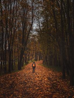 Sylwetka kobiety od tyłu w ciemnym lesie jesienią