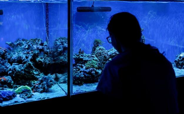 Sylwetka kobiety ogląda akwaria z rybami w oceanarium