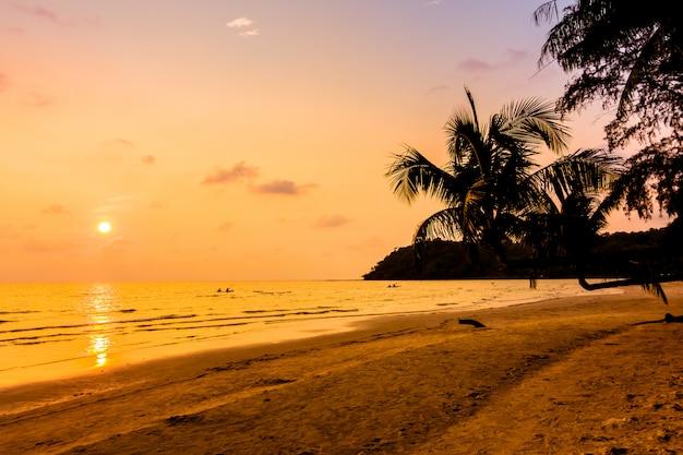 Sylwetka kokosowe palmy