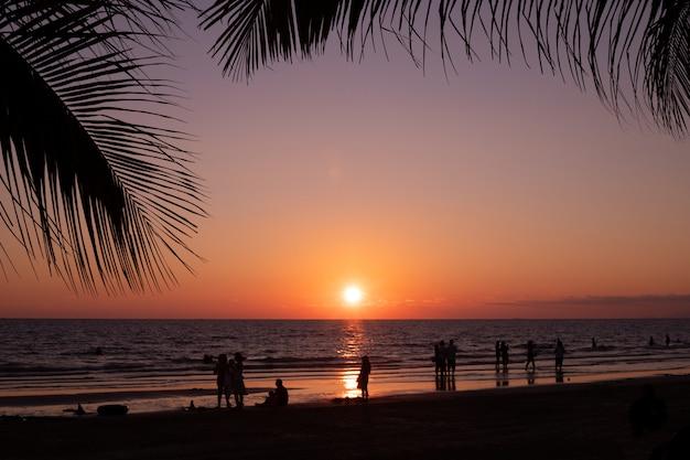Sylwetka kokosowych liści rama z plażą w wieczór niebie.