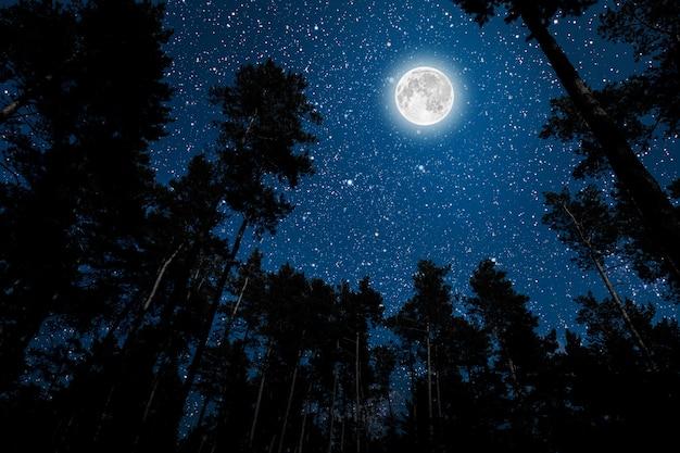 Sylwetka latającego goth świętego mikołaja na tle nocnego nieba. elementy tego obrazu dostarczone przez nasa