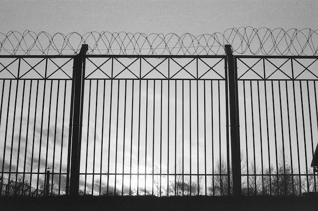 Sylwetka ogrodzenia z drutu kolczastego na folii. ponury, czarno-biały deszcz