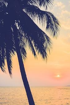 Sylwetka palmy