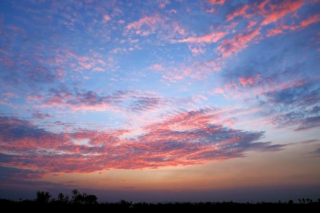 Sylwetka piękny kolorowy widok tło