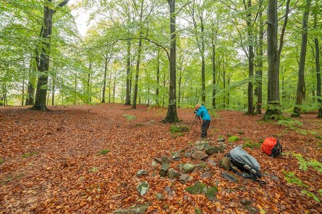 Sylwetka profesjonalnego fotografa robienia zdjęć lasu