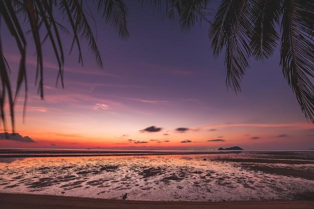 Sylwetka tajlandia zachód słońca plaża: liście palmy i mała wyspa w ciemnej oceanicznej wodzie zatoki w romantycznych odcieniach. piasek wybrzeża nad zatoką azjatyckiego kurortu. majestatyczny tajski krajobraz o zachodzie słońca w lecie